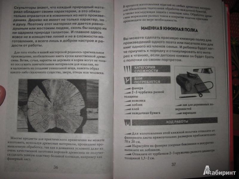 Иллюстрация 6 из 16 для Простые поделки из природных материалов - Светлана Жук   Лабиринт - книги. Источник: товарищ маузер