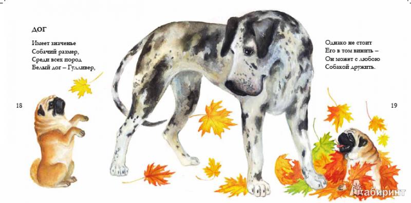 Иллюстрация 8 из 22 для Собачьи мечты - Игорь Карде | Лабиринт - книги. Источник: !!!