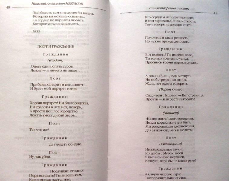 Иллюстрация 10 из 22 для Стихотворения и поэмы. Кому на Руси жить хорошо - Николай Некрасов | Лабиринт - книги. Источник: Сабирзанова  Арина