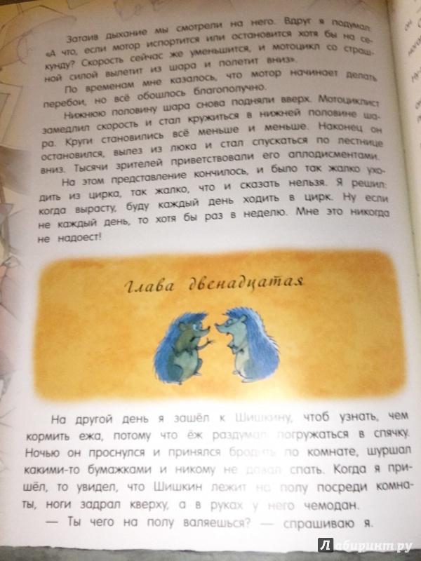 Иллюстрация 31 из 36 для Открой книгу! Витя Малеев в школе и дома - Николай Носов | Лабиринт - книги. Источник: Алина_книголюб