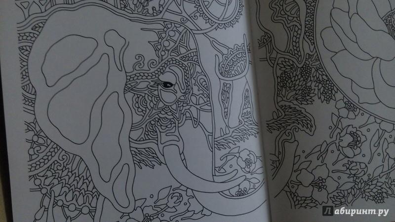 Иллюстрация 32 из 40 для Ветер уносит цветы. Книга ...