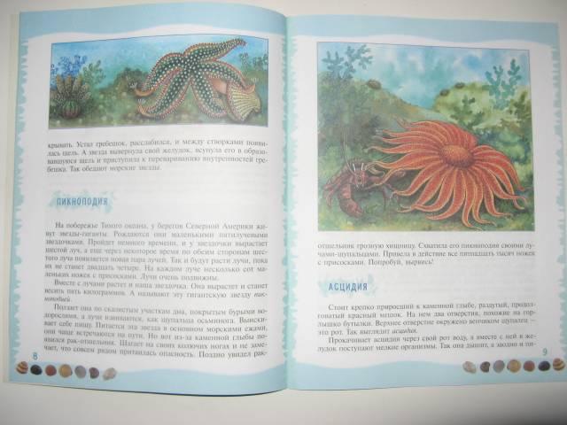 Иллюстрация 12 из 39 для Тайны морского дна: книга для чтения детям - Геннадий Целищев | Лабиринт - книги. Источник: varta