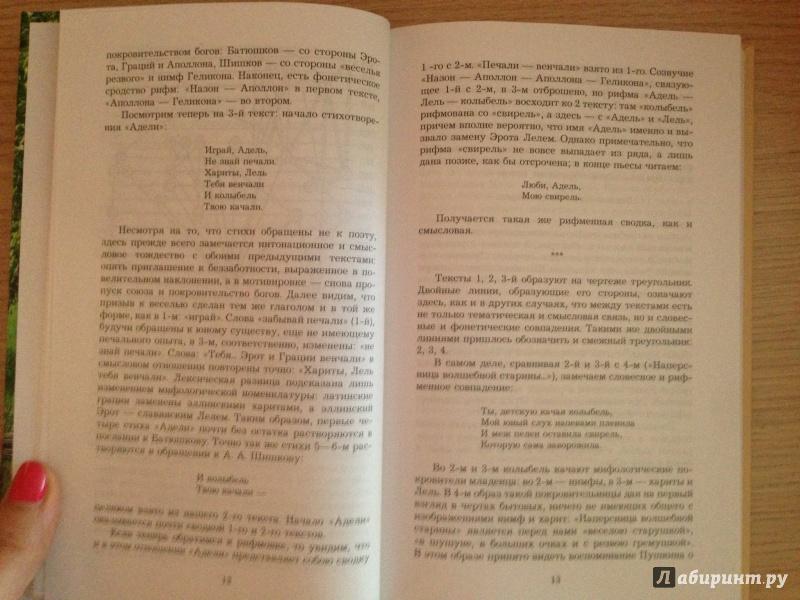 Иллюстрация 10 из 19 для О Пушкине - Владислав Ходасевич   Лабиринт - книги. Источник: София-Битломанка