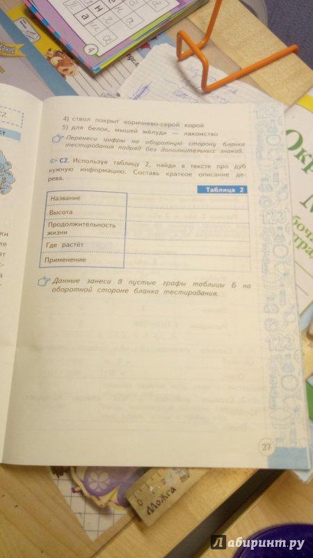 Иллюстрация 5 из 5 для Метапредметная диагностическая работа. 2 класс. Типовые задания. ФГОС - Елена Языканова | Лабиринт - книги. Источник: Серова  Мария