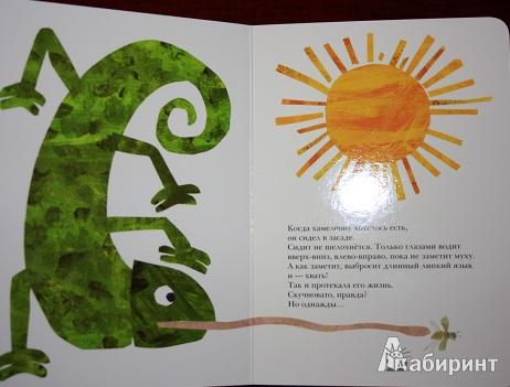Иллюстрация 5 из 13 для Мечтательный хамелеон - Эрик Карл | Лабиринт - книги. Источник: КНИЖНОЕ ДЕТСТВО