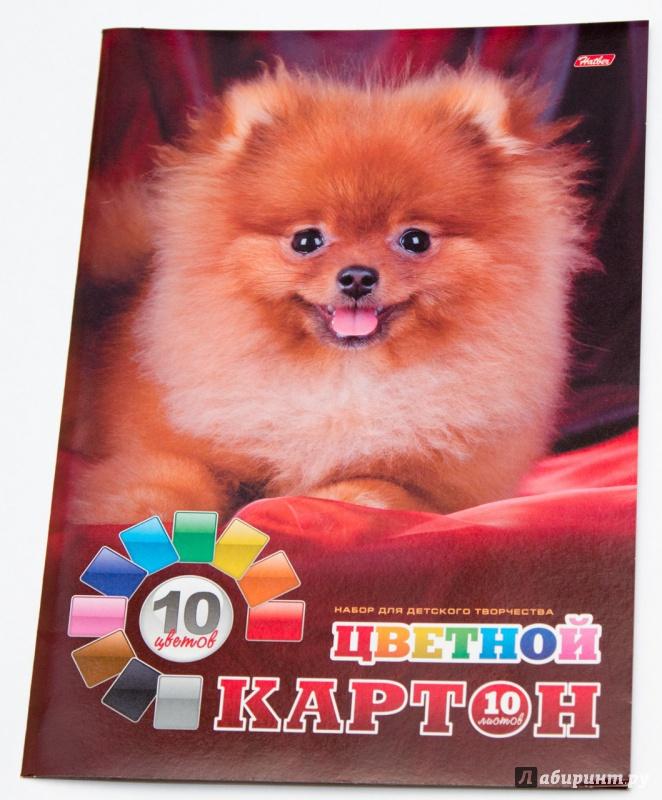 Иллюстрация 1 из 3 для Картон цветной 10 листов А4 (10Кц4) | Лабиринт - канцтовы. Источник: DogMeat