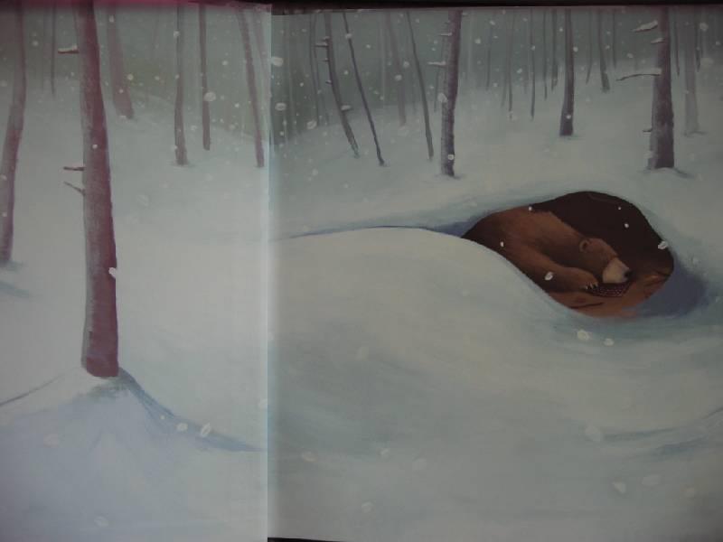 Иллюстрация 3 из 33 для Новый друг Медведика - Уилсон, Чапмен   Лабиринт - книги. Источник: Синявина Ольга Анатольевна