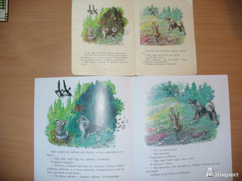 Иллюстрация 25 из 51 для Лиса и заяц - Евгений Чарушин | Лабиринт - книги. Источник: Ольга Филичкина