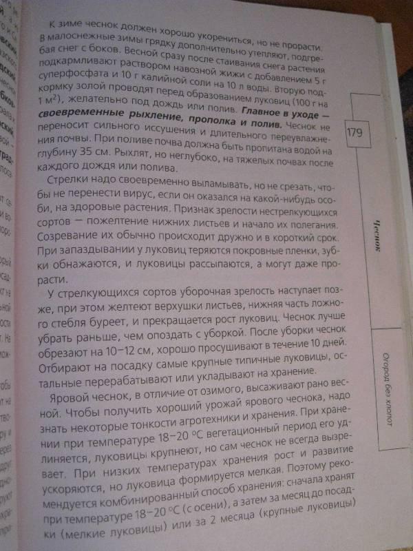 Иллюстрация 16 из 20 для Огород без хлопот - Андрей Туманов   Лабиринт - книги. Источник: Фея Нежности
