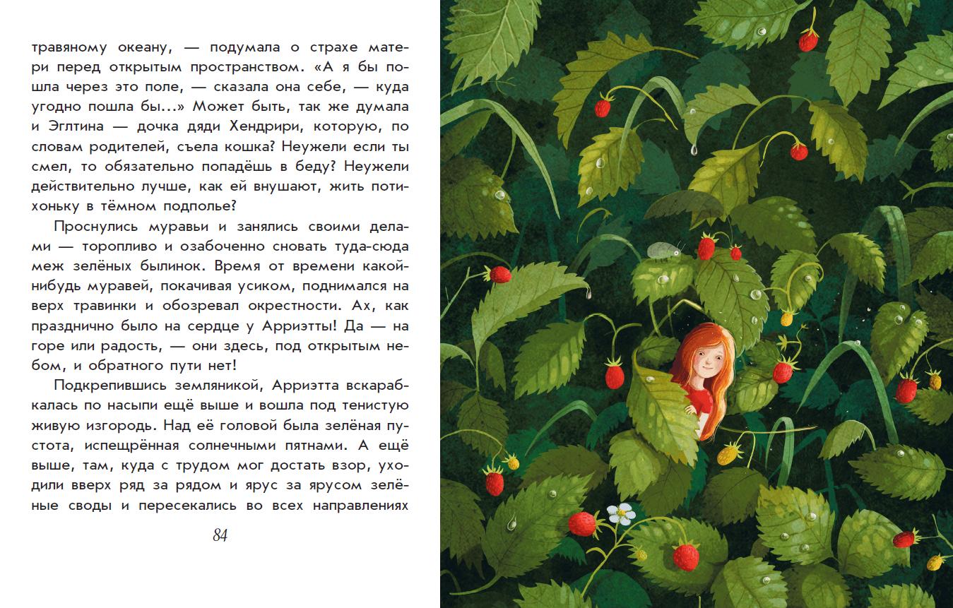 Иллюстрация 21 из 56 для Добывайки в поле - Мэри Нортон | Лабиринт - книги. Источник: Редактор этой книги