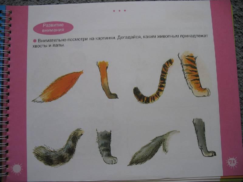 Иллюстрация 8 из 15 для Большая книга заданий и упражнений для детей 4-5 лет | Лабиринт - книги. Источник: В  Светлана Е