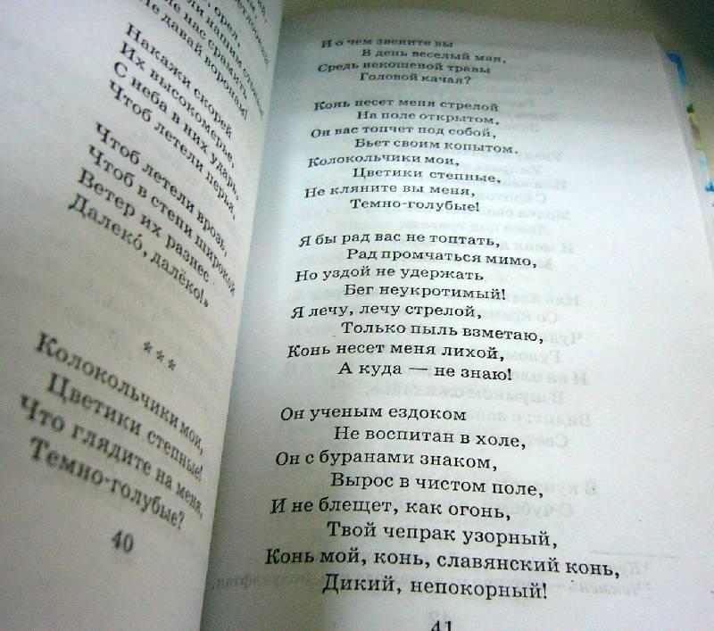 Иллюстрация 7 из 13 для Стихи русских поэтов: [XIX-XX вв.]   Лабиринт - книги. Источник: Nika