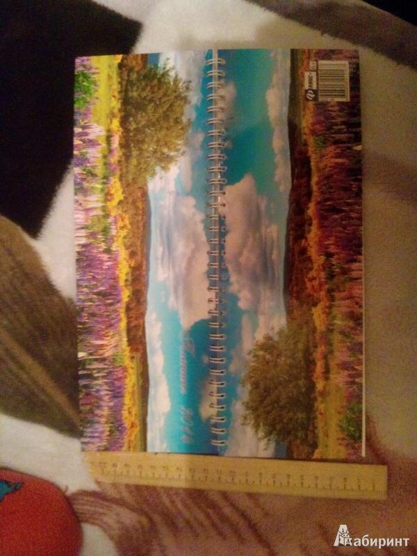 Иллюстрация 4 из 5 для Датированный планинг на 2014 год. Летний пейзаж (32004) | Лабиринт - канцтовы. Источник: Кириенко  Анастасия