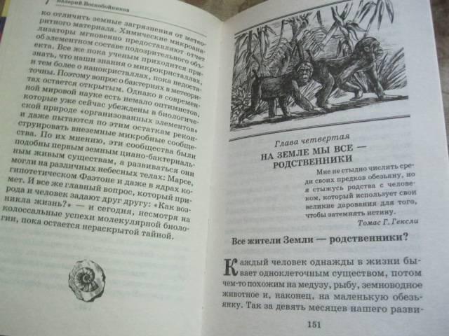 Иллюстрация 11 из 12 для Тайны происхождения человека - Валерий Воскобойников | Лабиринт - книги. Источник: NINANI