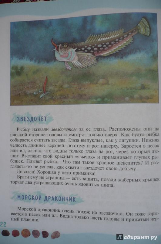 Иллюстрация 5 из 39 для Тайны морского дна: книга для чтения детям - Геннадий Целищев | Лабиринт - книги. Источник: Астанина  Олеся