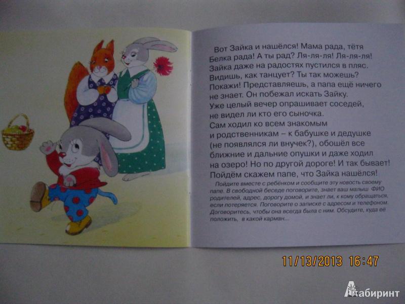 Иллюстрация 10 из 10 для Зайка потерялся - Сергей Савушкин | Лабиринт - книги. Источник: Мубаракшина  Татьяна