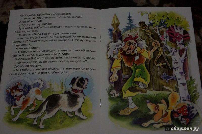 Иллюстрация 24 из 34 для Баба-Яга   Лабиринт - книги. Источник: Гаврилова  Екатерина