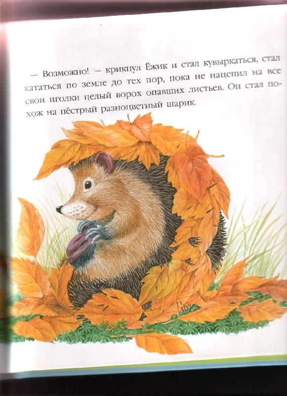 Иллюстрация 9 из 52 для В подарок малышу: Непонятливый львенок - Михаил Пляцковский | Лабиринт - книги. Источник: Anastasiavo