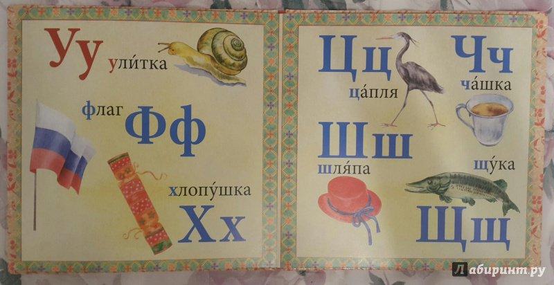 Иллюстрация 13 из 15 для Азбука | Лабиринт - книги. Источник: Давыдова  Амина