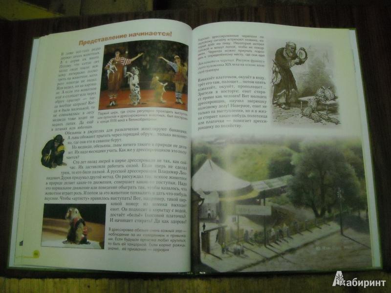 Иллюстрация 49 из 52 для Домашние животные - Светлана Лаврова   Лабиринт - книги. Источник: Лана666