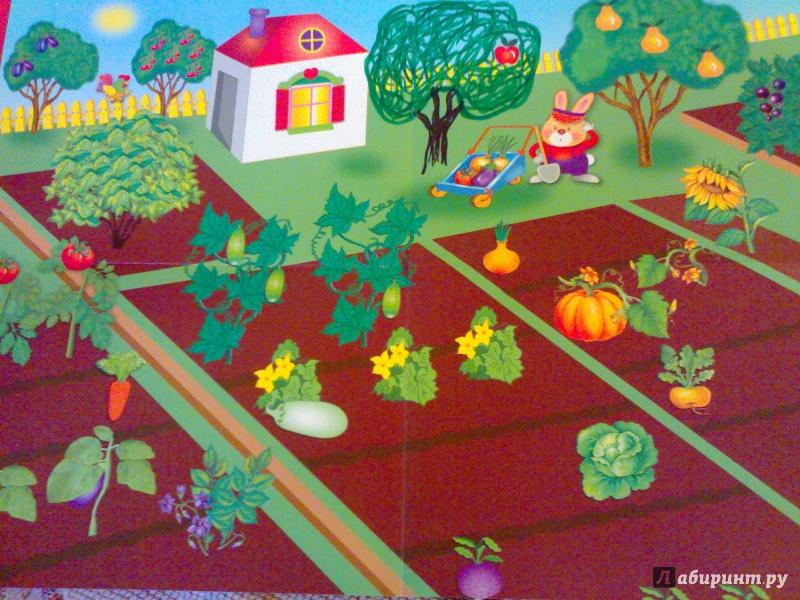 Графомоторика сад-огород картинки