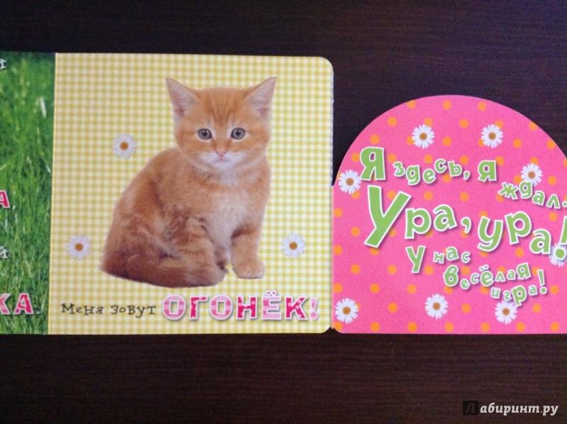 Иллюстрация 14 из 14 для Давай играть! Любопытные котята - Анжела Берлова   Лабиринт - книги. Источник: Сералиева  Айнагуль
