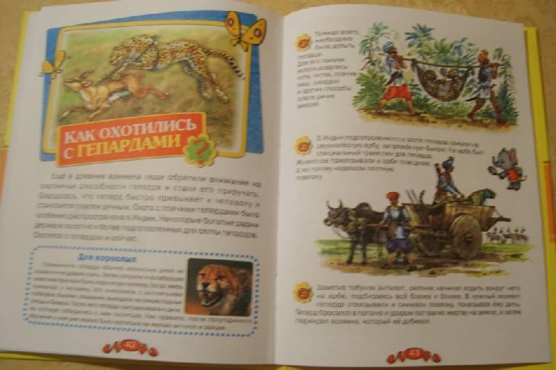 Иллюстрация 12 из 19 для Удивительные животные - Татьяна Комзалова | Лабиринт - книги. Источник: Tatka