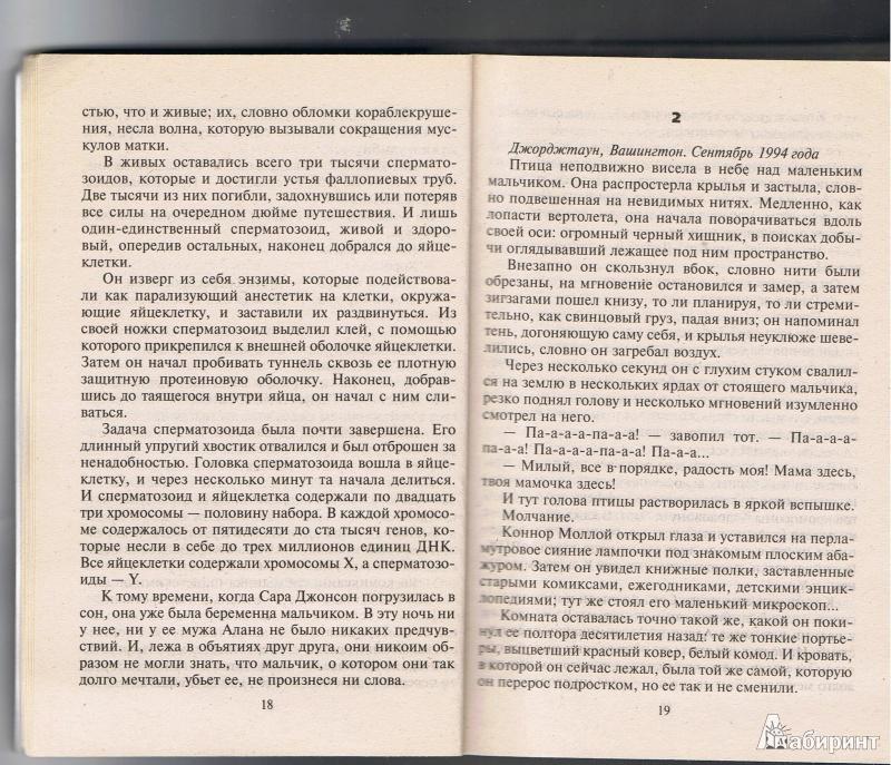 Иллюстрация 9 из 12 для Алхимик. Книга 1 - Питер Джеймс   Лабиринт - книги. Источник: Цветкова  Марина