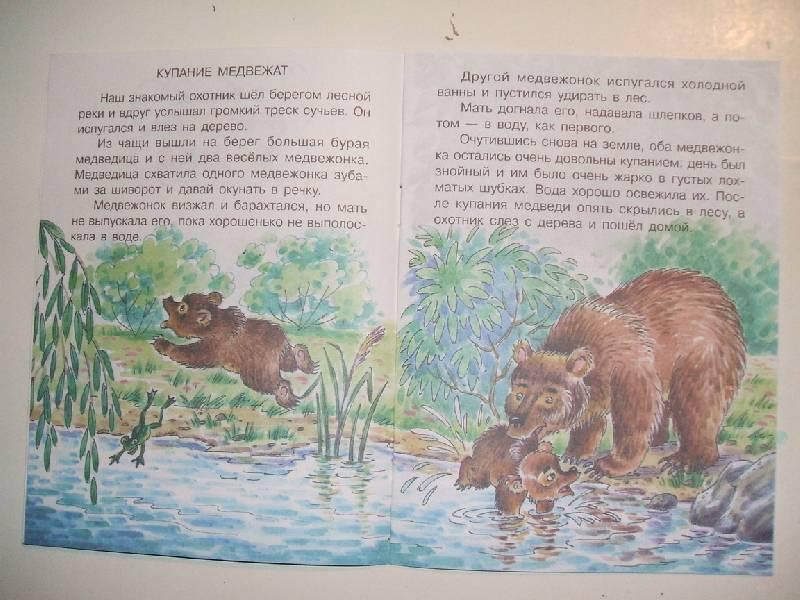 сказать иллюстрации к рассказу в бианки купание медвежат истоки можно