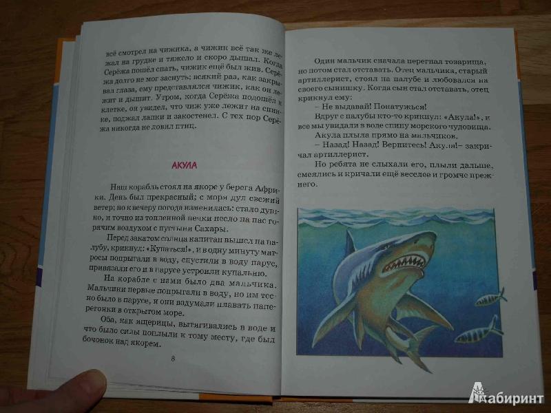 Иллюстрация 6 из 26 для Лев и собачка. Рассказы и сказки ...