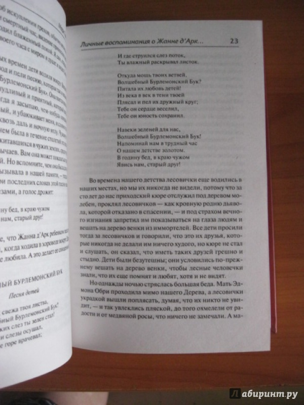 Иллюстрация 5 из 16 для Личные воспоминания о Жанне Д'Арк сьера Луи де Конта, ее пажа и секретаря - Марк Твен | Лабиринт - книги. Источник: Хабаров  Кирилл Андреевич