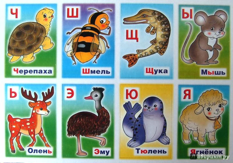 алфавит с картинками зверей для