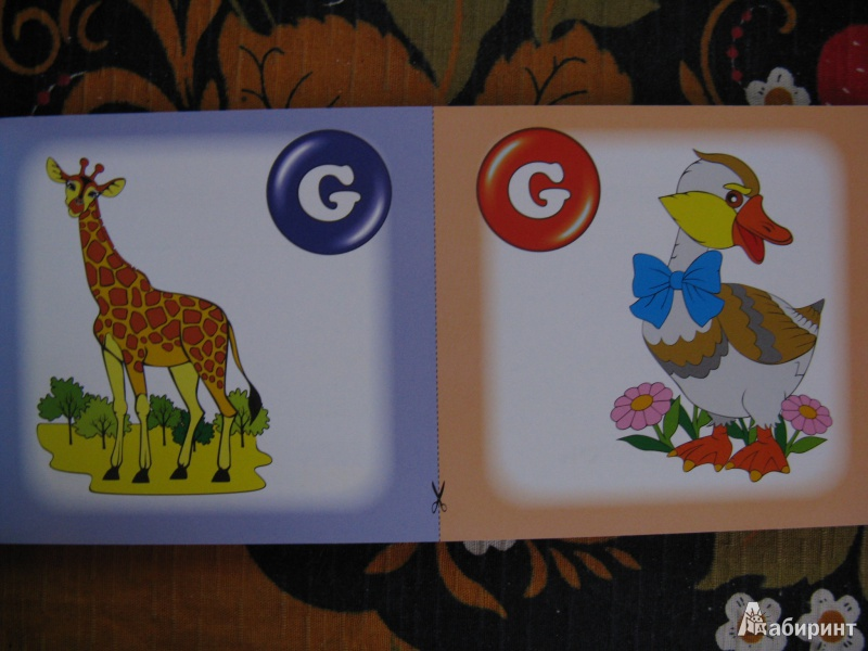Иллюстрация 4 из 14 для Алфавит. Числа. Коллекция карточек - Л. Зиновьева   Лабиринт - книги. Источник: Rusalochka-777