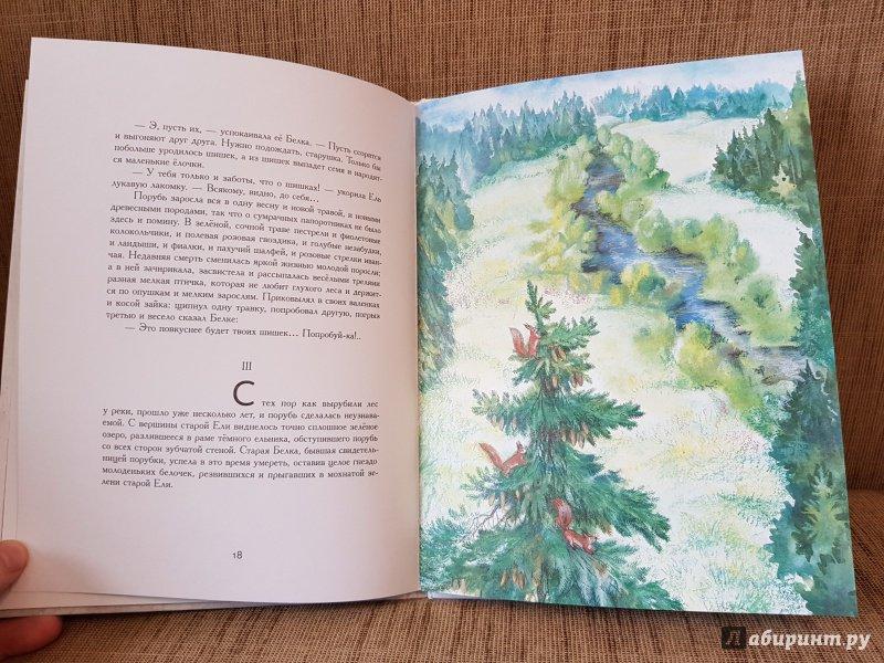 Мамин сибиряк картинки к сказке лесная сказка изменения расстояния