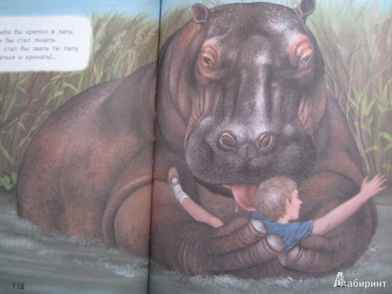 скрыть недостатки иллюстрации к стихам саши черного слон рамони сего