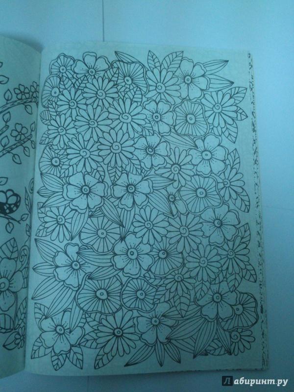 Иллюстрация 7 из 30 для Волшебный сад. Раскраска для ...