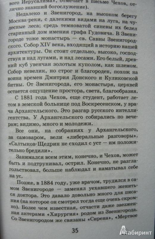 Иллюстрация 7 из 13 для Чехов - Борис Зайцев   Лабиринт - книги. Источник: Шевцов  Илья