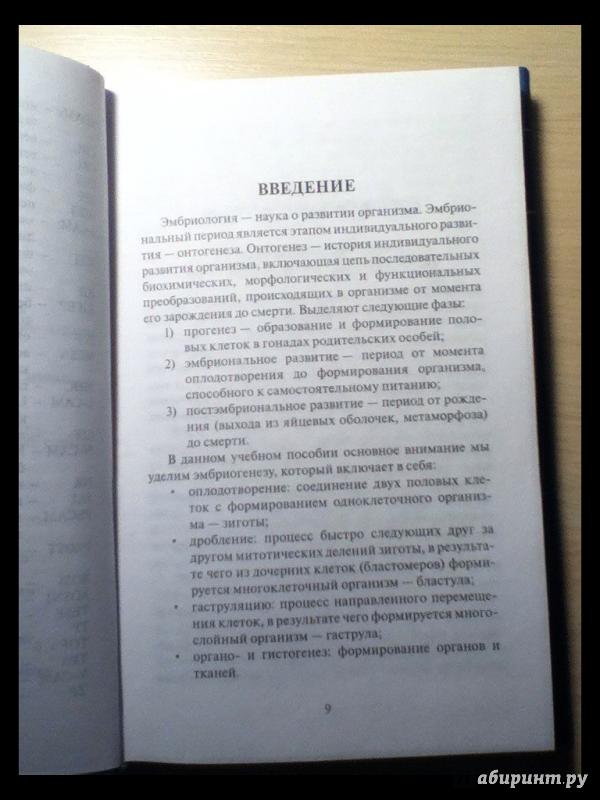 Иллюстрация 21 из 37 для Эмбриология. Учебное пособие - Студеникина, Слука | Лабиринт - книги. Источник: Полина Орлова
