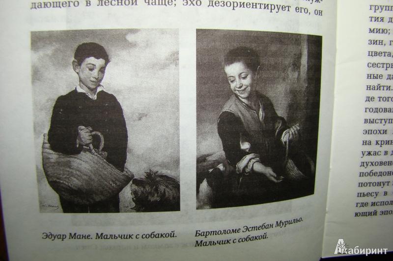 Иллюстрация 17 из 28 для Жизнь Мане - Анри Перрюшо | Лабиринт - книги. Источник: Яга