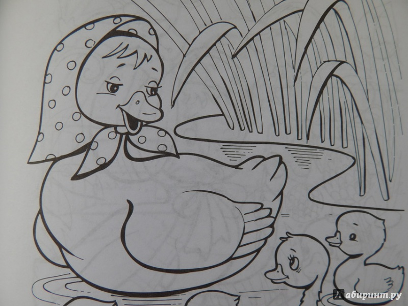 Картинка к сказке гадкий утенок нарисован простым карандашом