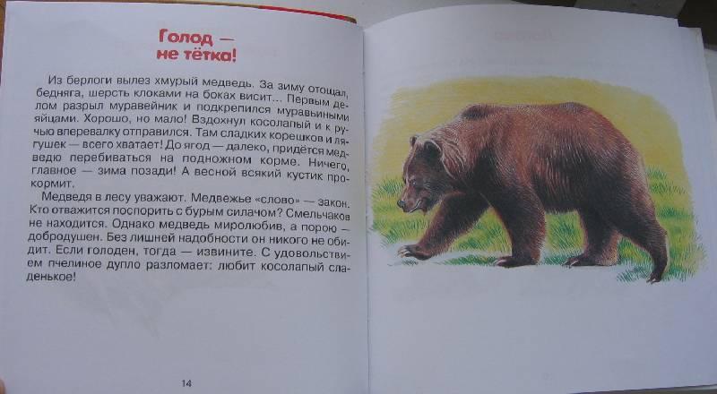 Иллюстрация 1 из 22 для Родная природа - Александр Тихонов | Лабиринт - книги. Источник: Крошка Сью