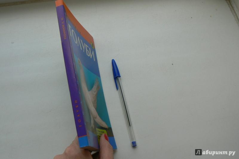 Иллюстрация 8 из 19 для Голуби. Обзор видов. Содержание. Кормление. Разведение - Александр Рахманов | Лабиринт - книги. Источник: Марина