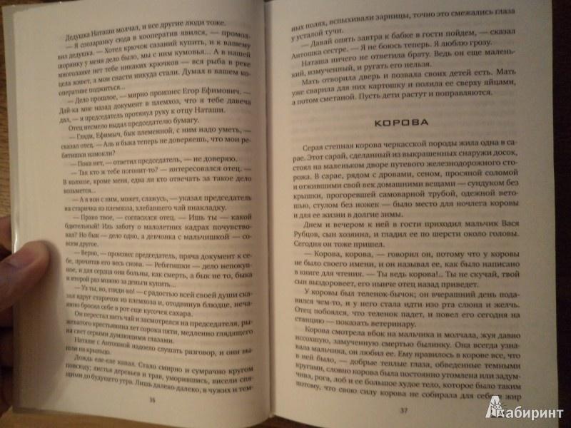Иллюстрация 6 из 25 для Сухой хлеб: Рассказы, сказки - Андрей Платонов   Лабиринт - книги. Источник: Karfagen