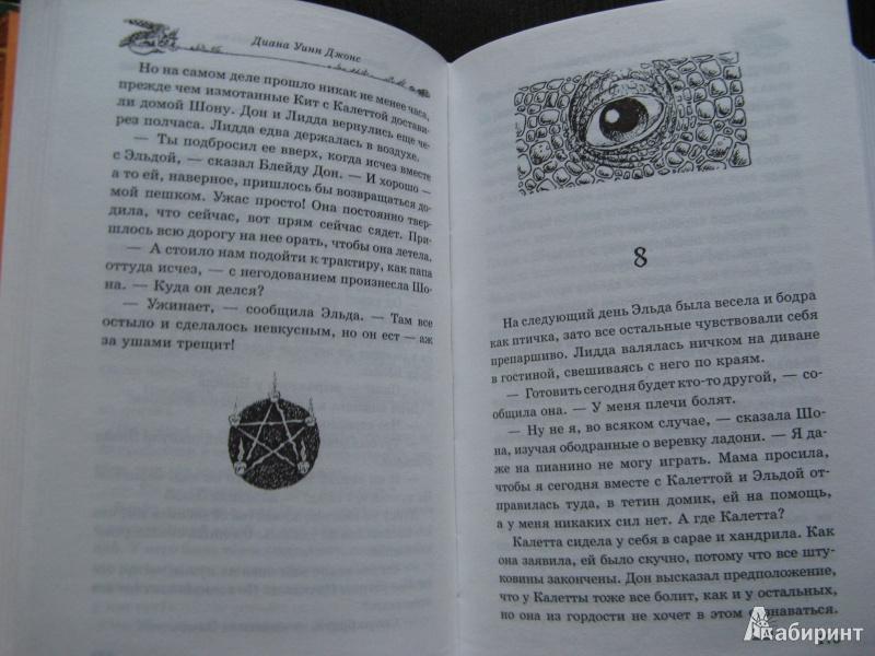 Иллюстрация 19 из 44 для Темный властелин Деркхольма - Диана Джонс | Лабиринт - книги. Источник: Ольга