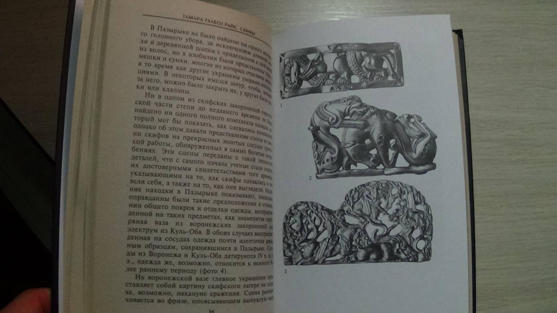 Иллюстрация 2 из 12 для Скифы. Строители степных пирамид - Тамара Райс | Лабиринт - книги. Источник: Консультант по наукам