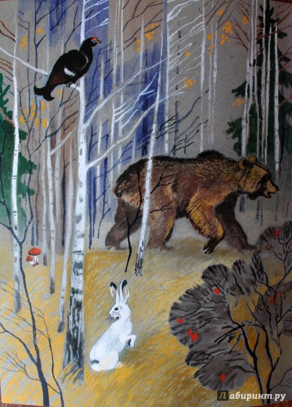виталий бианки заяц косач медведь и весна картинки