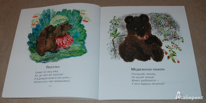 Иллюстрация 22 из 51 для Лиса и заяц - Евгений Чарушин | Лабиринт - книги. Источник: Книжный кот