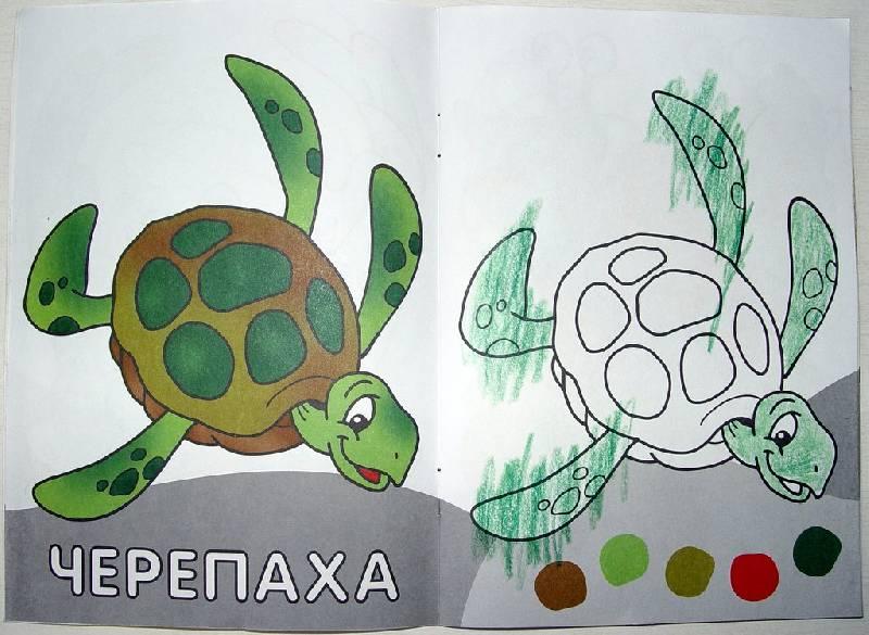 Иллюстрация 1 из 11 для Посмотри и раскрась. Животные | Лабиринт - книги. Источник: чайник