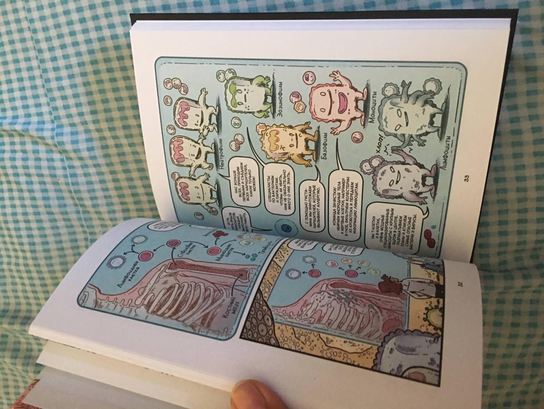 Иллюстрация 34 из 41 для Вирусы и микробы. Научный комикс - Фалинн Кох   Лабиринт - книги. Источник: Лабиринт