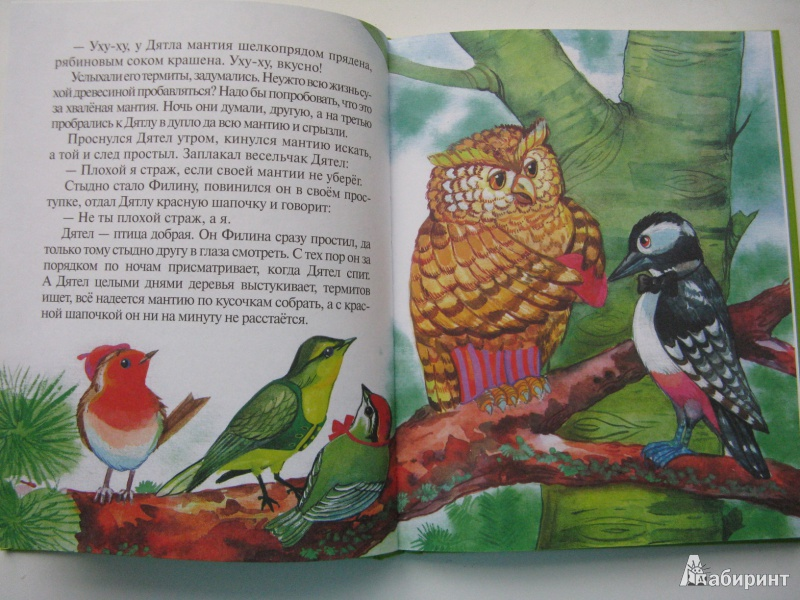Иллюстрация 4 из 27 для Сказки почемучки, Лесной календарь - Тамара Крюкова | Лабиринт - книги. Источник: Уткина  Любовь